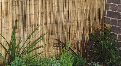 Fences and bamboo poles
