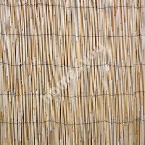 Reed fence IN GARDEN, 1.5x5m, natural