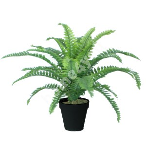 Kunsttaim BOSTON FERN, H45cm, sõnajalg, must pott