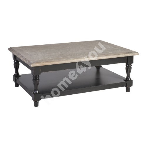 Coffee table WATSON 120x80xH45cm, material: oak / birch, color: antique grey / black