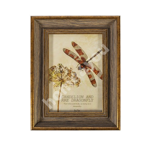 Photo frame DRAGON FLY, for 13x18cm, antique brown