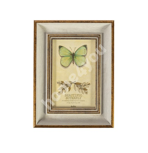 Photo frame DRAGON FLY, for 10x15cm, antique white