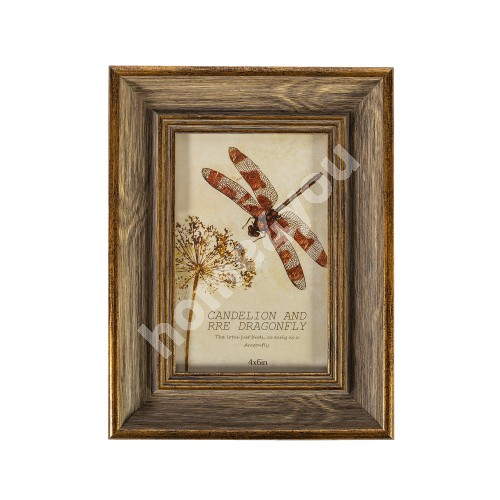 Photo frame DRAGON FLY, for 10x15cm, antique brown