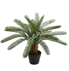 Искусственное растение CYCAS H70см, чёрный горшок