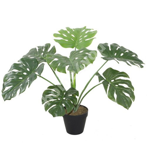 Kunsttaim MONSTERA, H60cm, must pott